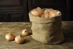 Zwiebeln in einem Jutefaserbeutel Lizenzfreies Stockfoto