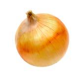 zwiebeln Getrennt auf weißem Hintergrund Stockbild