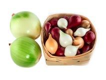 Zwiebeln grünen, Weiß, Rot und Gelb Lizenzfreie Stockfotografie