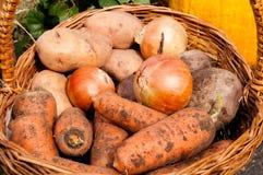 Zwiebeln, Kartoffeln, Karotten, buriak, das in einem Korb liegt Stockfotos