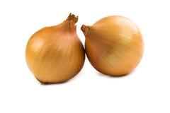 Zwiebeln lokalisiert auf weißem Hintergrund Lizenzfreies Stockfoto