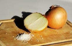 Zwiebeln mit Salz Lizenzfreie Stockfotos
