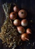 Zwiebeln schließen oben auf dem Tisch stockfotos
