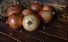 Zwiebeln schließen oben auf dem Tisch lizenzfreie stockfotografie
