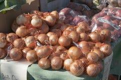 Zwiebeln und Äpfel Stockbild
