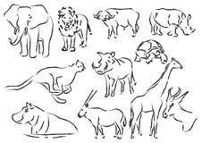 zwierząt afrykańskich Zdjęcia Royalty Free