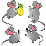 zwierząt ilustraci odosobniony myszy set Fotografia Royalty Free