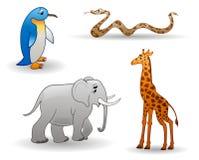 zwierząt słonia żyrafy pingwinu wąż Fotografia Stock