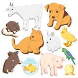 Zwierząt zwierząt domowych wektorowe kolorowe ikony ustawiać ilustracja wektor