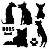 Zwierzę domowe psy, czarna sylwetka - wektorowa kolekcja ilustracji