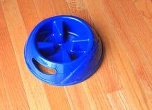 Zwierzę domowe Puchar fotografia stock