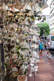Zwierzę domowe ryba na sprzedaży przy Goldfish rynkiem w Hong Kong Zdjęcia Royalty Free