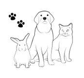 Zwierzę domowe sklep ilustracja wektor