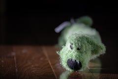 Zwierzę domowe zabawka na twarde drzewo podłoga Fotografia Stock