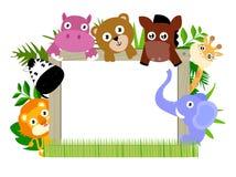Zwierzę i rama Fotografia Royalty Free