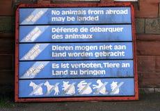 zwierzę nie za granicą obraz stock