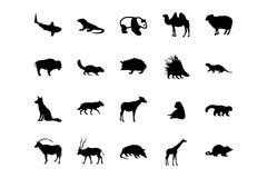 Zwierzęce Wektorowe ikony 3 Obrazy Royalty Free