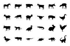 Zwierzęce Wektorowe ikony 1 Zdjęcie Stock