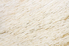 zwierzęcego włosy biel Obrazy Royalty Free