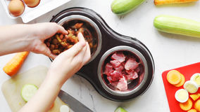 Zwierzęcia domowego jedzenie spada puszek w zwierzę domowe puchar z składnikami zdjęcie wideo