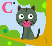 Zwierzęcy abecadło dla dzieciaków: C dla kota Zdjęcie Royalty Free