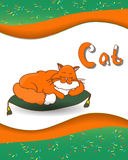 Zwierzęcy abecadło list C i kot Obrazy Stock