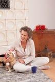 Zwierzęcy Bożenarodzeniowy duch przy seniorem z twój psem zdjęcie royalty free