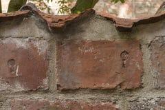 Zwierzęcy druk na ściana z cegieł w piekarnianym korytarzu w luebeck Fotografia Stock