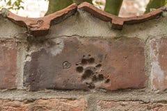 Zwierzęcy druk na ściana z cegieł w piekarnianym korytarzu w luebeck Obrazy Stock