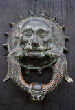 Zwierzęcy drzwiowy knocker na nieociosanym drzwiowym drewnianym drzwi Zdjęcie Stock