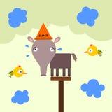 Zwierzęcy dunce ilustracji