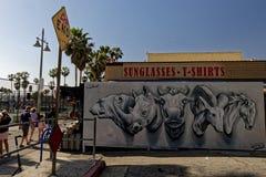 Zwierzęcy głowy malowidło ścienne przy Wenecja plażą fotografia royalty free