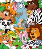 Zwierzęcy kreskówki tło Zdjęcie Stock