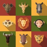 Zwierzęcy portret Ustawiający z Płaskim projektem Zdjęcia Stock