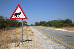 Zwierzęcy skrzyżowanie Obrazy Royalty Free