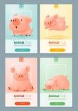 Zwierzęcy sztandar z świniami dla sieć projekta Zdjęcie Royalty Free