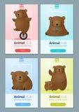 Zwierzęcy sztandar z niedźwiedziami dla sieć projekta Fotografia Royalty Free