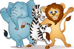 zwierzęcy taniec Zdjęcia Royalty Free