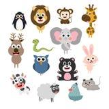 Zwierzęcy wektor zdjęcie stock