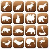 zwierzęta ilustracji