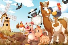 zwierzęta Zdjęcia Stock