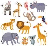 Zwierzęta dżungla Wektorowy ustawiający charaktery ilustracja wektor