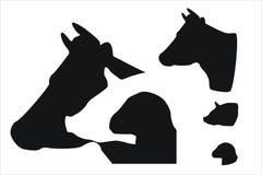 Zwierzęta gospodarskie Obrazy Stock