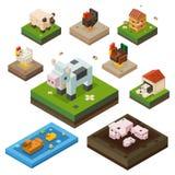 Zwierzęta gospodarskie koloru isometry set Obrazy Stock