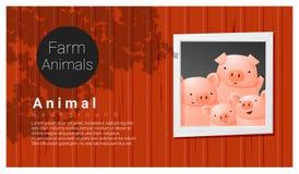 Zwierzęta gospodarskie tło z świnią royalty ilustracja
