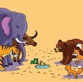 zwierzęta gromadzą się dzikiego Obrazy Royalty Free