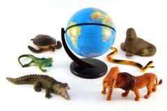zwierzęta różnorodni Fotografia Stock