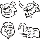 zwierzęta szalenie Obraz Stock