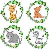 Zwierzęta w wektorze: żyrafa, kangur, nosorożec, zebra Fotografia Stock