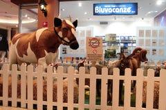 Zwierzęta zoo z faszerującymi zwierzętami na wycieczce turysycznej w Włochy Zdjęcia Royalty Free